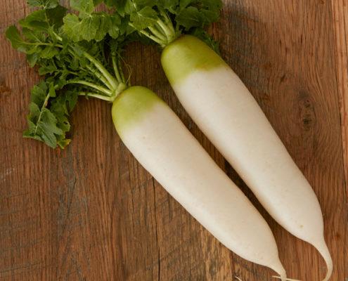 茨城県産 つくば野菜 大根