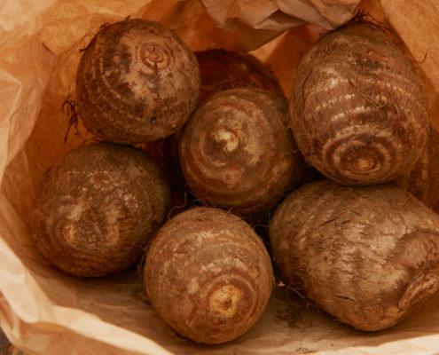 茨城県産 つくば野菜 里芋